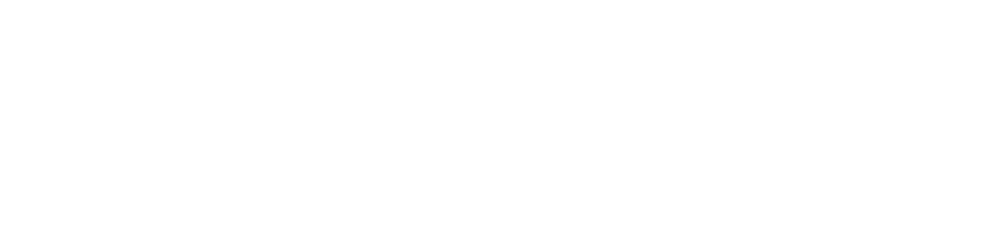 Humboldt Institute for Internet and Society